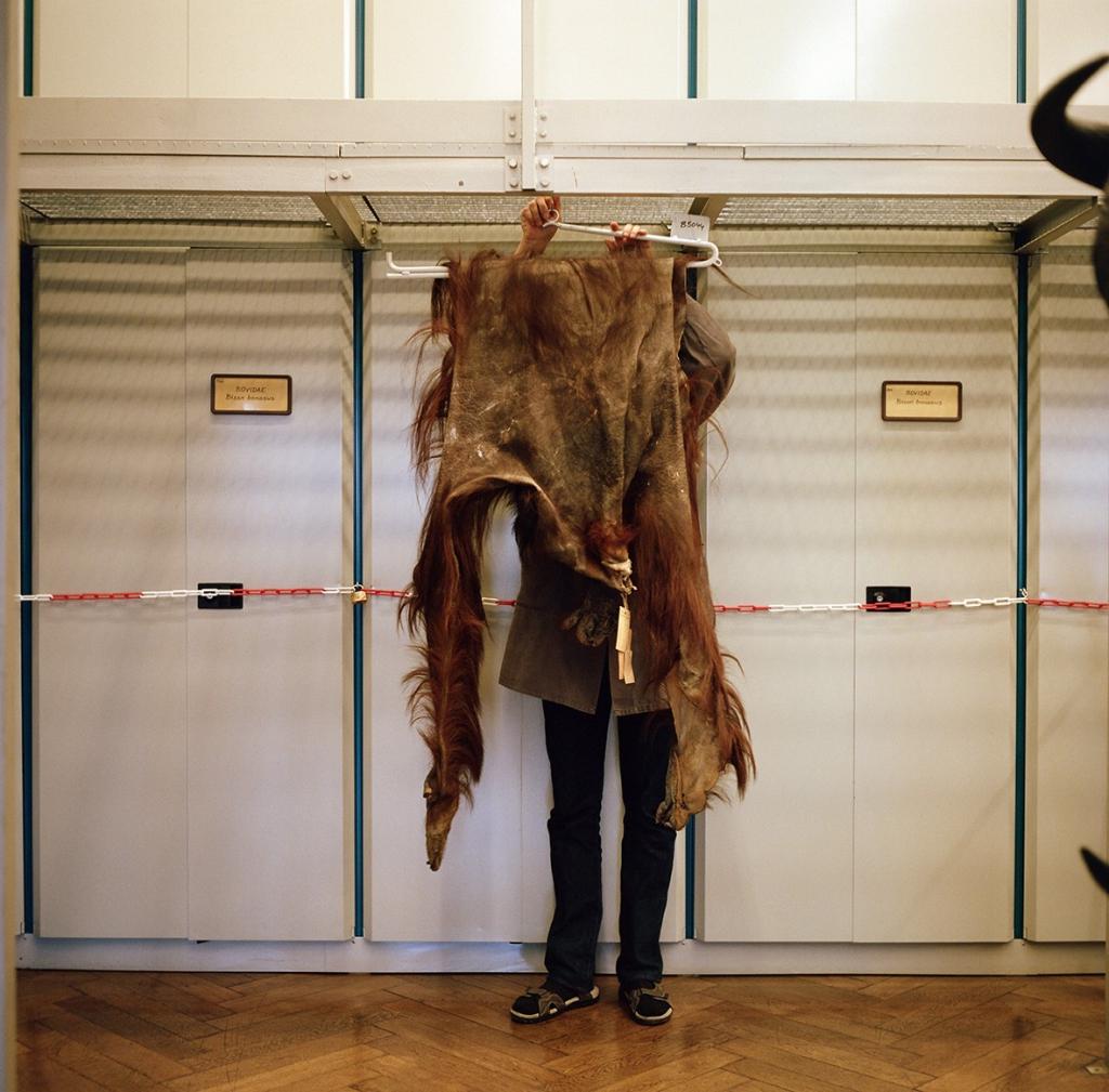 thumbnail_emil_naturhistorischesmuseum vienna 2018